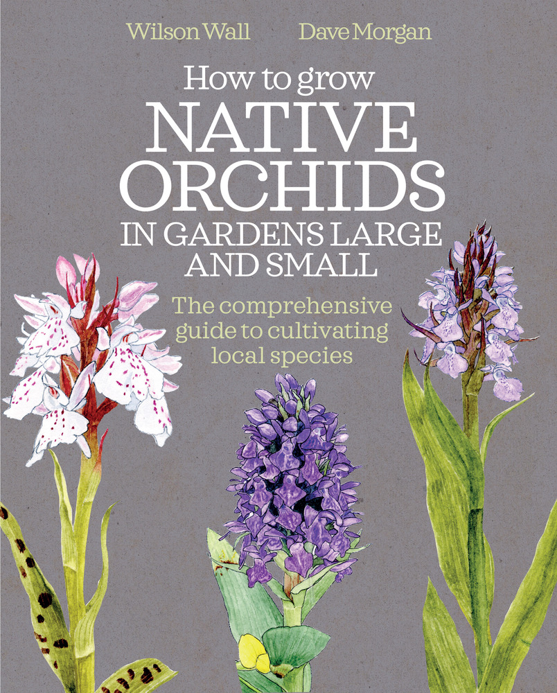 Green Books - How to Grow Native Orchids in Gardens Large and Small